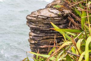 Skały Naleśnikowe Punakaiki Nowa Zelandia